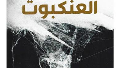 Photo of بلاد تركب العنكبوت