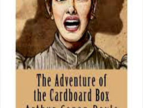 Photo of The Adventure of the Cardboard Box
